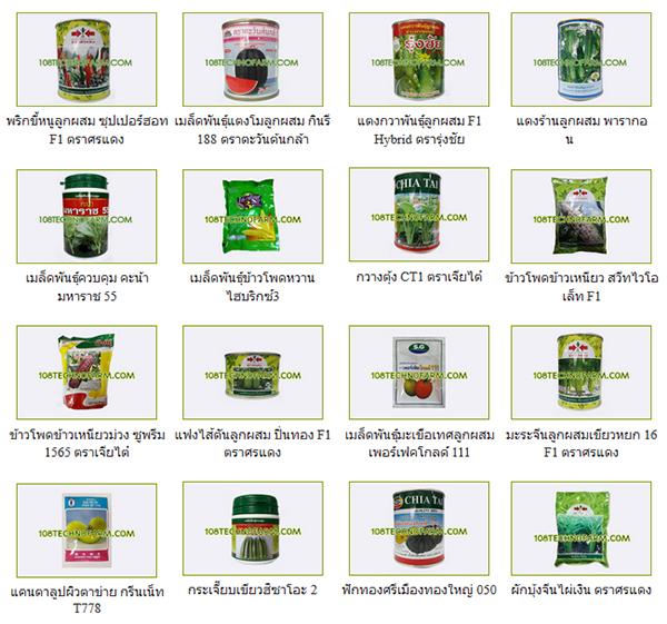 Mua hạt giống Thái Lan online