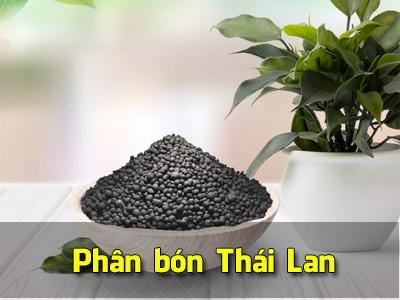 Hướng dẫn nhập phân bón Thái Lan số lượng lớn
