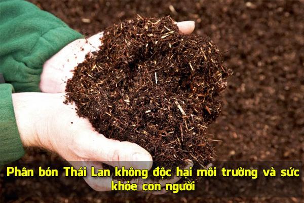 Phân bón Thái Lan không độc hại môi trường và sức khỏe con người